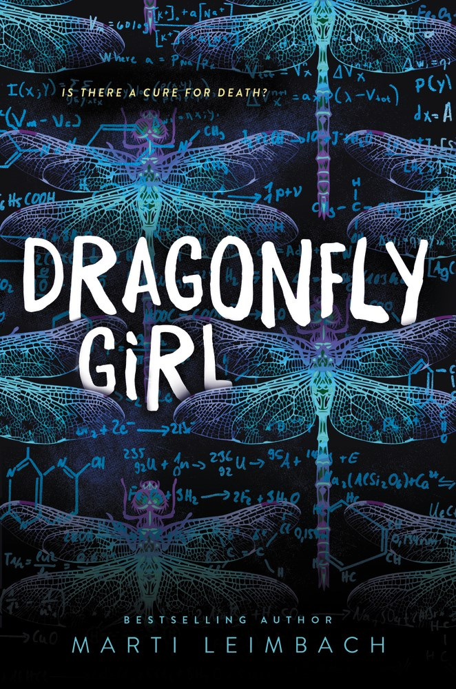 Book Review: Dragonfly Girl by Marti Leimbach
